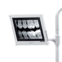 Diplomat Dental Monitor
